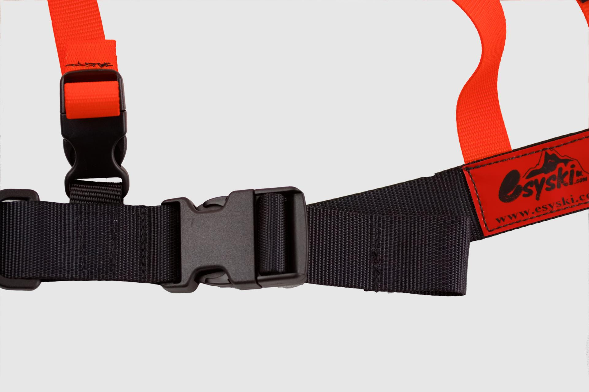 Adjustable and detachable buckles